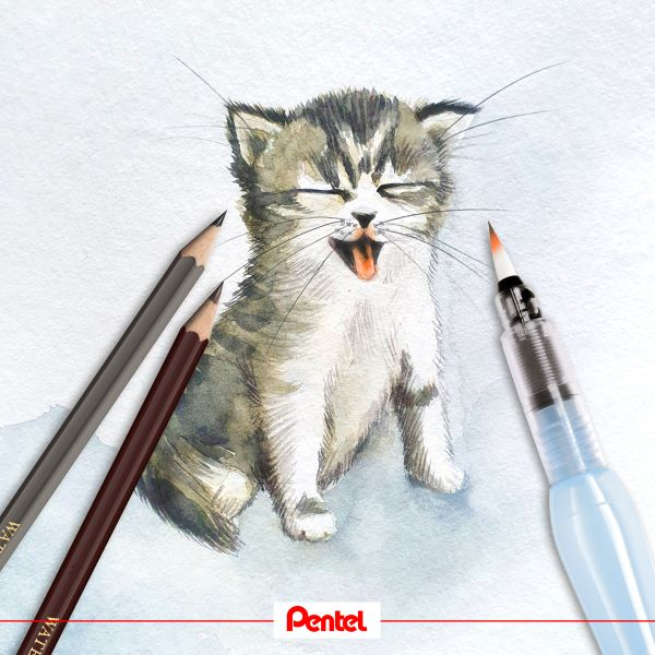 Pentel-about-1